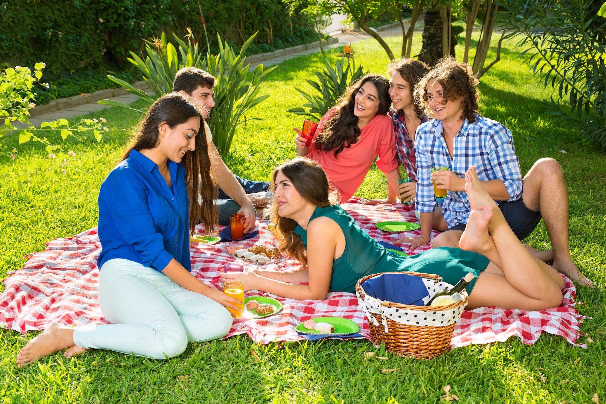 видео молодежи на пикнике после анального